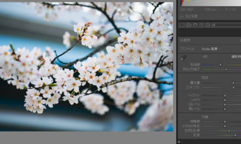 lightroom 彩度